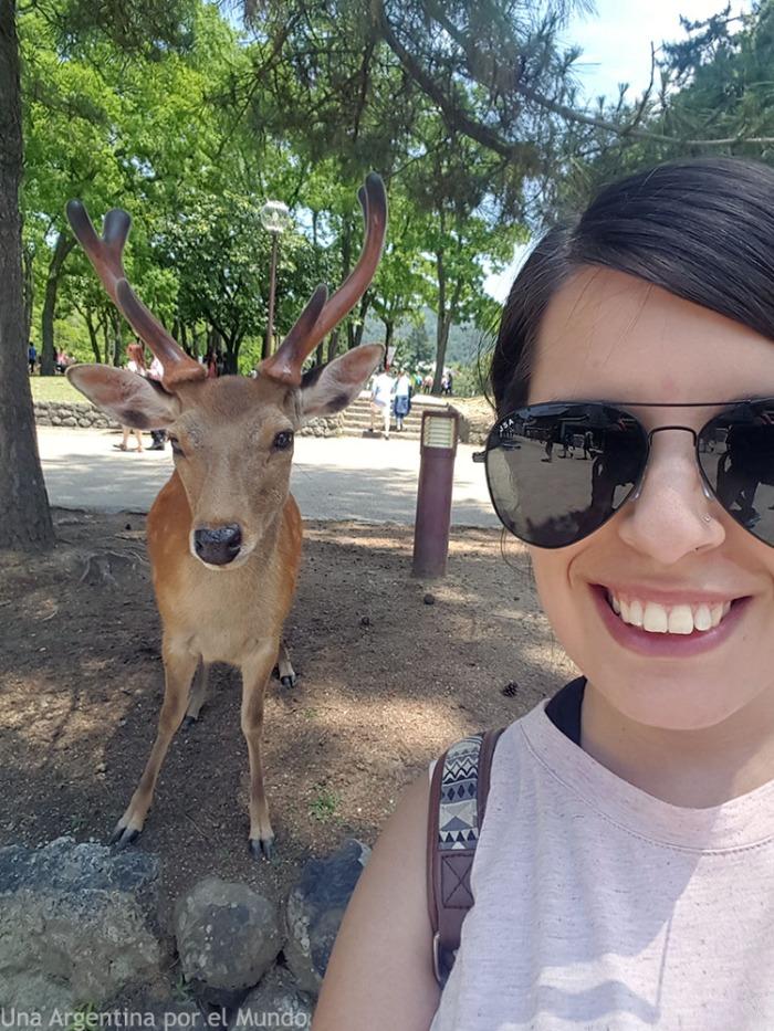 Selfie con ciervos