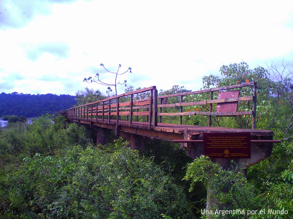 Pasarelas Parque Nacional Iguazu